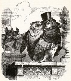 "J.J. Grandville - ""A Nocturnal Duet"" - Illustration from Public and Private Life of Animals, 1876"