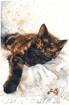 Nostalgia - Braden Duncan Fine Art. Love the well done eyes on this painted tortie cat