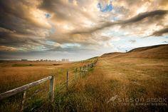 somewhere near Moeraki, South Island New Zealand. Landscape photography by Todd Sisson | Sisson Stock Photos