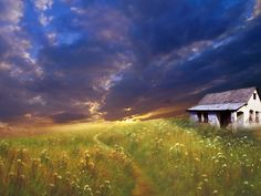 HD Widescreen painting image - painting category