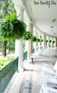 Check out these 20 Summer Front Porches for amazing inspiration! Enjoy summer living all season long with these beautiful summer front porches. Southern Porches, Southern Homes, Country Porches, Southern Living, West Baden Springs Hotel, West Baden Hotel, Hanging Ferns, Hanging Plants Outdoor, Hanging Baskets