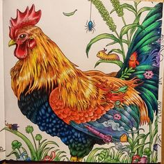 Done! #animorphia #rooster #colouringbook #adultcolouring #pencils #coloursoft #colours #coloringnerd #coloringMasterpiece #coloring_secrets