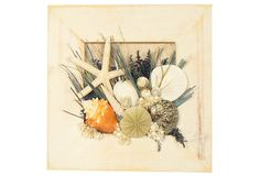 """Tahiti Shore Hanging - Bring a coastal feel to the decor with a hanging arrangement that brings together caspia, green grass, ammobium, seashells, and more. 9"""" square ($25.00/$40.00 retail)"""