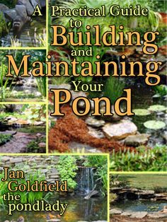 You want a pond in your garden. You want fish and water lilies and a waterfall; you want to relax next to your pond after work and sip your tea. But before you go buy a shovel, there are a few things to think about.How to Build and Maintain Your Pond is a compilation of Jan Goldfield's 25-years of experience as the renown pondlady in and around New Orleans, Louisiana.