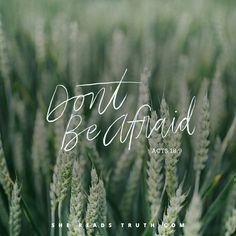 Amen  (made with #shereadstruth) #God #Bibleverses #Life