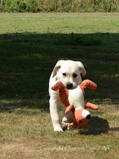YELLOW LABRADOR PUPPY retrieves his stuffed by overthefenceart