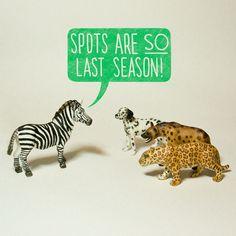 Spots are so last season!