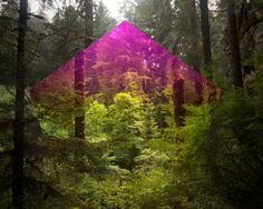 Terrestrial Manipulations: Mark Dorf - artsy forager #art #photography #digitalcollage