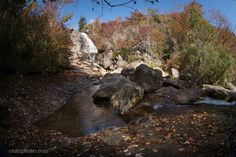 Colorful leaves on the ground around the Upper Falls at Graveyard Fields on the Blue Ridge Parkway near Asheville,  North Carolina.  #graveyardfields #blueridgeparkway #Autumn #Fall #nc #asheville