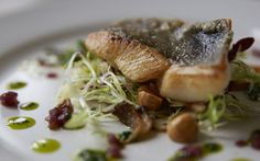 Chef Tom Symons loves to cook John Dory with chicory and hazelnuts, red-wine shallot dressing and parsley oil John Dory, Hazelnut Recipes, Freshwater Fish, Red Wine, Pork, Food And Drink, Chicken, Parsley, Cooking