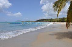 Plage de l'Anse Corps de Garde Sainte Luce Martinique