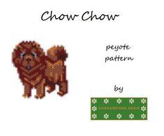 Chow Chow #chowchow