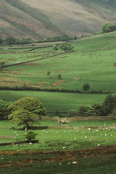 Hope Valley, Derbyshire - visited this beautiful area with my brothers on one of our annual walks (may 1997)