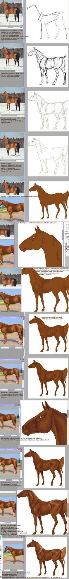 Dibujando y pintando caballo