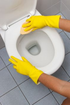 Gloved hands wipe toilet seat