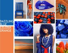 Pantone Spring 2014 Color Forecast - Dazzling Blue paired with Celosia Orange by www.despacedesigns.com