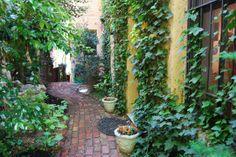 Artist Anita Walsh's Garden Studio