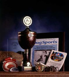 trophies with dog on top - Google Search