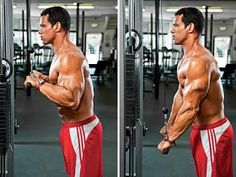 Gym Workout: How to Get Big Arms in 2 Weeks