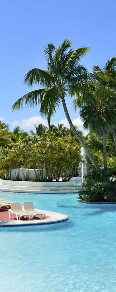 #TravelTuesday #Pool #Resort #Caribbean #CataloniaCaribbean #CataloniaBavaroBeach