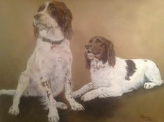 'Heidi & Purdy'. English springer spaniels by Tania Robinson. Acrylic on canvas. Private commission 2013.