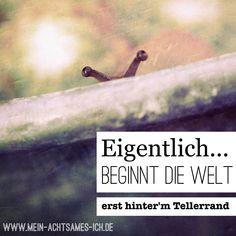 Eigentlich beginnt die Welt erst hinter'm Tellerrand… www.mein-achtsames-ich.de