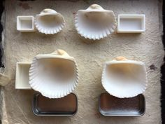 The Painter's Secret Room — Shell sizes for plant dyes and sensitive semi...
