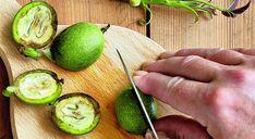 Do nálevu na svatojánský likér využijete zelené vlašské ořechy nasbírané...