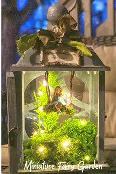 Decorating for spring Step by step guide: creating a miniature fairy garden inside your favorite lan Indoor Fairy Gardens, Mini Fairy Garden, Fairy Garden Houses, Miniature Fairy Gardens, Fairy Crafts, Garden Crafts, Garden Art, Garden Ideas, Fairy Lanterns
