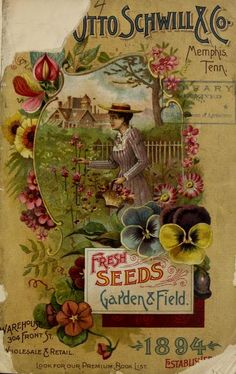 Annual catalogue of Otto Schwill & Co.'s seeds ...