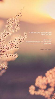 Korea Wallpaper, Astro Wallpaper, Wallpaper Quotes, Korean Phrases, Korean Words, Bts Lyric, Song Lyric Quotes, K Quotes, Cute Quotes