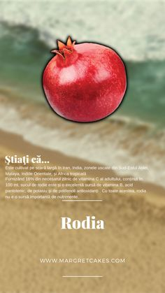 Tropical, Apple, Fruit, Food, The Fruit, Meals, Yemek, Apples, Eten