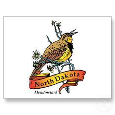 North Dakota Meadowlark Vintage Travel Souvenir postcard