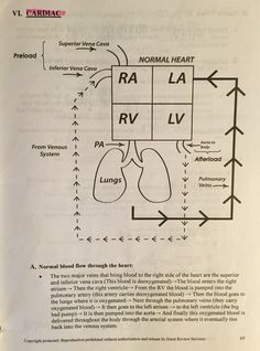 Hurst Review- normal blood flow #cardiomeme