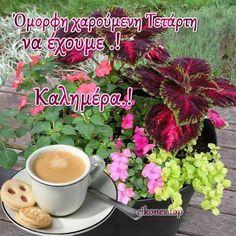 Good Night, Good Morning, Nighty Night, Buen Dia, Have A Good Night, Bonjour, Bom Dia
