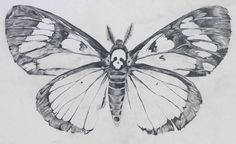 I am obsessed with the death head moth. I want it on my stomach under my boobs. I was thinking my chest below the collar bone but stomach seems better.