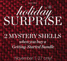 Miche November Surprise For Customers