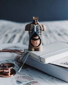omw to become a great doctor ⭐️ Thin Hair Cuts pixie cut thin hair round face Medical Art, Medical Science, Medical School, Medical Symbols, School Motivation, Study Motivation, Nurse Aesthetic, Medical Wallpaper, Med Student
