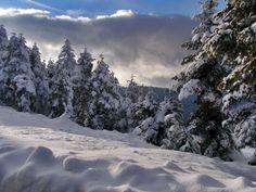 Χιόνια στην Καλιακούδα Ευρυτανίας