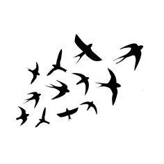 Nouvel article publié sur le site littéraire Plume de Poète - La danse des hirondelles- Fattoum Abidi                                                                                                                                                                                 Plus