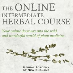 Who's joining us for the Online Intermediate Herbal Course in 2014? Make your resolution to learn something new this year. You won't regret it!