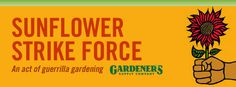 Do you know of any neglected median strips or vacant lots in your town that could use a lift? Plant a sunflower seed or two and see what happens. Join us in celebration of International Sunflower Guerrilla Gardening Day (May 1) by planting a sunflower where it's needed.