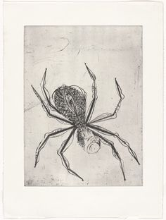 Louise Bourgeois. Spider. 1995