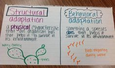 fifth grade anchor charts Grade at Decker Elementary - Science Resources Third Grade Science, Middle School Science, Elementary Science, Science Classroom, Teaching Science, Science Education, Waldorf Education, Classroom Resources, Upper Elementary