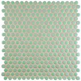 """Found it at Wayfair - Astraea 12"""" x 12"""" Porcelain Mosaic Tile in Mint"""
