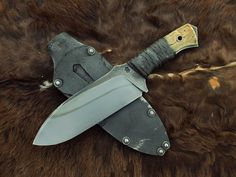 turtle knives - Google Search