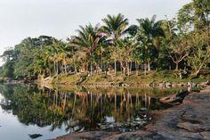 Exotische Reizen Suriname - Djumu, jungle, Suriname