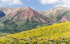 Up in the West Elk mountains, Crested Butte is renowned for its alpine views and first-rate skiing. But in July, during the weeklong Wildflower Festival (now in its 29th year), the town's many hillside trails come alive with billowing crests of pink, orange, and gold. Hike up into higher elevations to glimpse alpine sunflowers—though small, these fist-size flowers are often decades in the making and bloom only once in their life. Crested Butte, #Colorado #iGottaTravel
