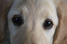 You gotta love that look!!!