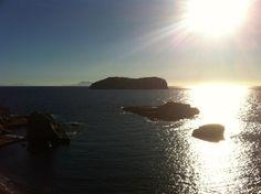 www.sailingtribe.eu